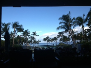 Hawaiian View